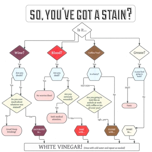 {I love flow charts ALMOST as much as I love vinegar}